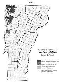 Distribution of A. spinifera in Vermont