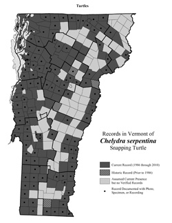 Distribution of C. serpentina in Vermont