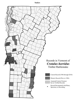 Distribution of C. horridus in Vermont