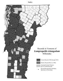 Distribution of L. triangulum in Vermont