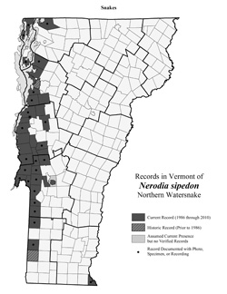 Distribution of N. sipedon in Vermont