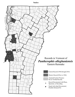 Distribution of P. alleghaniensis (previously Elaphe alleghaniensis) in Vermont